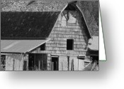 Old Barns Pyrography Greeting Cards - Old Barns Greeting Card by Laurie Kidd