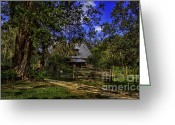 Restless Light Photography Greeting Cards - Old Florida Homestead Greeting Card by Lynn Palmer