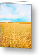 Rural Art Greeting Cards - On a Clear Day Greeting Card by Bonnie Bruno