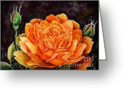 Most Painting Greeting Cards - Orange rose Greeting Card by Zaira Dzhaubaeva