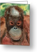 Orangutans Greeting Cards - Orangutan Greeting Card by Donald Maier