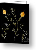 Floral Abstracts Greeting Cards - Organic Forms Greeting Card by Frank Tschakert