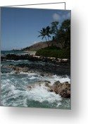 Unique Gifts Greeting Cards - Paako Beach Makena Maui Hawaii Greeting Card by Sharon Mau