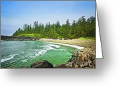 Deserted Greeting Cards - Pacific ocean coast on Vancouver Island Greeting Card by Elena Elisseeva
