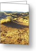 High Desert Glass Art Greeting Cards - Painted Desert 2 Greeting Card by Patricia Bigelow