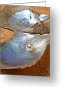 Oysters Greeting Cards - Pearl in oyster shell Greeting Card by Garry Gay