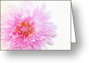 Pink Flower Prints Mixed Media Greeting Cards - Pink Greeting Card by Elaine Manley