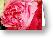 Pink Peonies Greeting Cards - Pink Peonies Greeting Card by Cathie Tyler