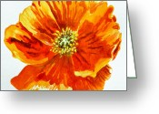 Watercolor By Irina Greeting Cards - Poppy Greeting Card by Irina Sztukowski