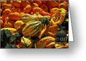 Pumpkin Farm Greeting Cards - Pumpkins and gourds Greeting Card by Elena Elisseeva