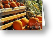 Sell Greeting Cards - Pumpkins Greeting Card by Elena Elisseeva