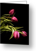 Purple Greeting Cards - Purple Tulips Greeting Card by Cathie Tyler