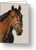 Quarter Horses Pastels Greeting Cards - Quarter Horse Greeting Card by Ann Marie Chaffin