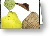 Fungus Greeting Cards - Quinces Greeting Card by Bernard Jaubert
