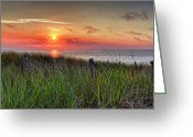 Beach Grass Greeting Cards - Race Point Sunset Greeting Card by Bill  Wakeley