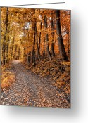 Autumnal Digital Art Greeting Cards - Ramble On Greeting Card by Bill Cannon