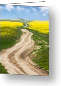 Rapeseed Greeting Cards - Rapeseed fields Greeting Card by Gabriela Insuratelu