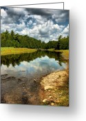 Layer Greeting Cards - Reflection of Nature Greeting Card by Joe  Ng