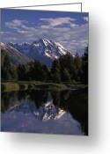 Snow Capped Photo Greeting Cards - Reflection Of The Teton Mountans Greeting Card by Richard Nowitz