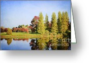 November Sunset Greeting Cards - Reflections Greeting Card by Darren Fisher