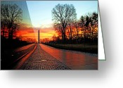 America Greeting Cards - Resolve Greeting Card by Mitch Cat