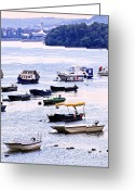 Fishermen Greeting Cards - River boats on Danube Greeting Card by Elena Elisseeva