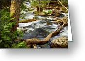 Cascading Greeting Cards - River rapids Greeting Card by Elena Elisseeva