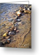 Great Lakes Photo Greeting Cards - Rocks in water Greeting Card by Elena Elisseeva