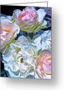 Floral Greeting Cards - Rose 59 Greeting Card by Pamela Cooper