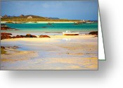 Ireland Greeting Cards - Rossadillisk Quay Greeting Card by Gabriela Insuratelu