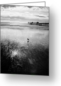 Clemente Greeting Cards - San Clemente Pier Greeting Card by G Wigler