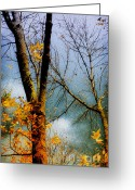 Bare Trees Greeting Cards - Season Ending Greeting Card by Julie Palencia
