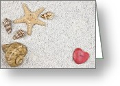 Sweetheart Greeting Cards - Seastar And Shells Greeting Card by Joana Kruse