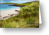 Eire Greeting Cards - Sellerna beach Greeting Card by Gabriela Insuratelu
