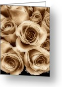 Reception Room Greeting Cards - Sepia Roses Greeting Card by Cheryl Young