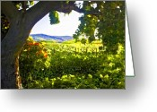 Vineyard Digital Art Greeting Cards - Shady Vineyard Greeting Card by Patricia Stalter
