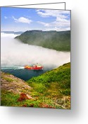 Red Bay Greeting Cards - Ship entering the Narrows of St Johns Greeting Card by Elena Elisseeva