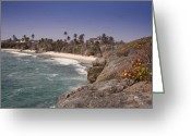 Beaches Greeting Cards - Shores of Barbados Greeting Card by Andrew Soundarajan