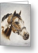 Quarter Horses Greeting Cards - Show Off Greeting Card by Cathy Cleveland