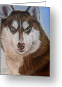 Dogs Pastels Greeting Cards - Siberian Husky Greeting Card by Irisha Golovnina