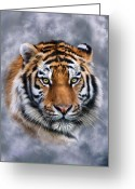 Siberian Tiger Greeting Cards - Siberian Tiger Greeting Card by Julie L Hoddinott
