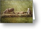 Shimmering Greeting Cards - Sitting Greeting Card by Skip Nall