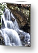 Virginia Winter Greeting Cards - Snow and Waterfall Greeting Card by Thomas R Fletcher