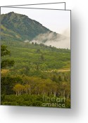 Mound Greeting Cards - Snowbasin Utah Greeting Card by Donna Van Vlack