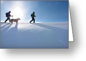 Prowess Greeting Cards - Snowshoe Greeting Card by Mark Weber