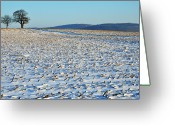Ile De France Greeting Cards - Snowy Fields In Winter Greeting Card by Sami Sarkis