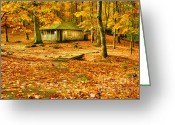 Pioneer Park Greeting Cards - Solitude Greeting Card by Darren Fisher