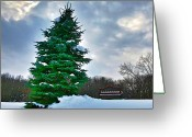 Tree Artwork Mixed Media Greeting Cards - Solitude  Greeting Card by Robert Pearson