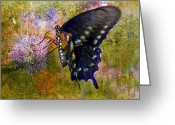 Spicebush Digital Art Greeting Cards - Spicebush Swallowtail Butterfly Greeting Card by J Larry Walker