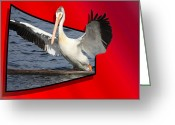 Black Beak Greeting Cards - Spread Your Wings Greeting Card by Shane Bechler